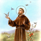 The Story of St Francis
